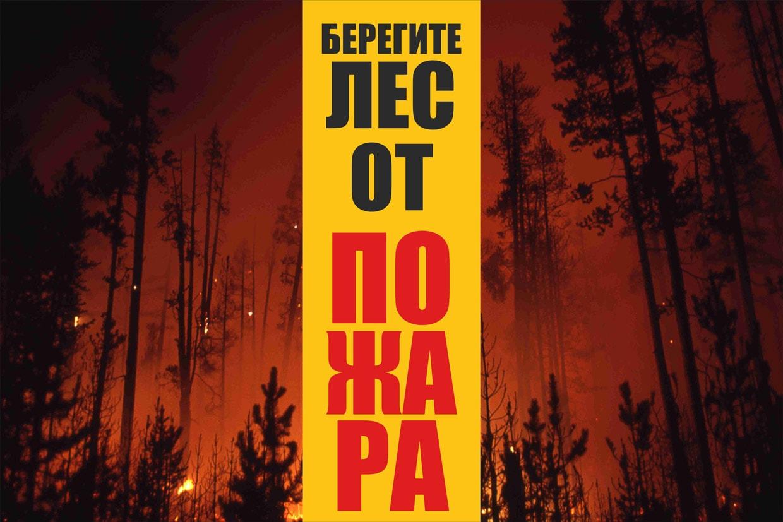 береги лес постеры говоря